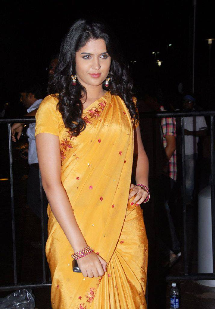 DEEKSHA SETH BEAUTIFUL LOOK IN SAREE AT SANTOSHAM AWARDS Photoshoot images