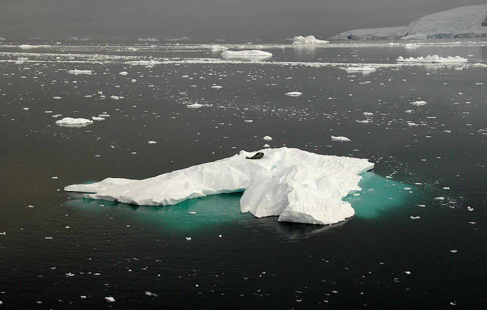 Góry lodowe #2 33