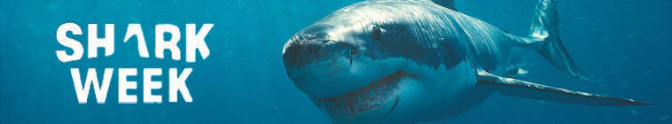Shark Week 2013 Voodoo Shark HDTV XviD-AFG