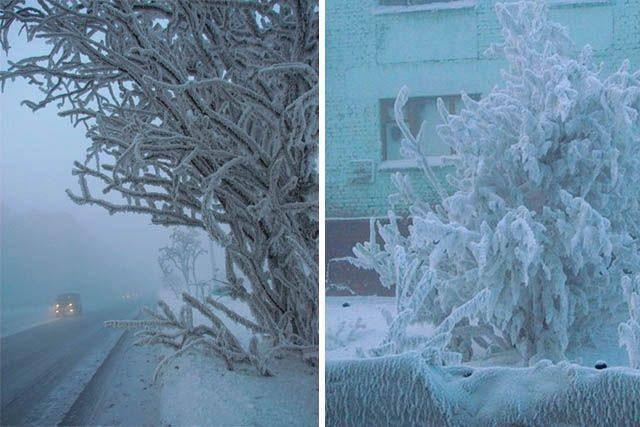 Biała zima 10