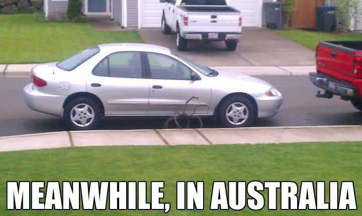 Tymczasem w Australii #2 1