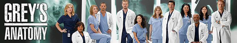 Greys Anatomy S10E12 HDTV XviD-AFG