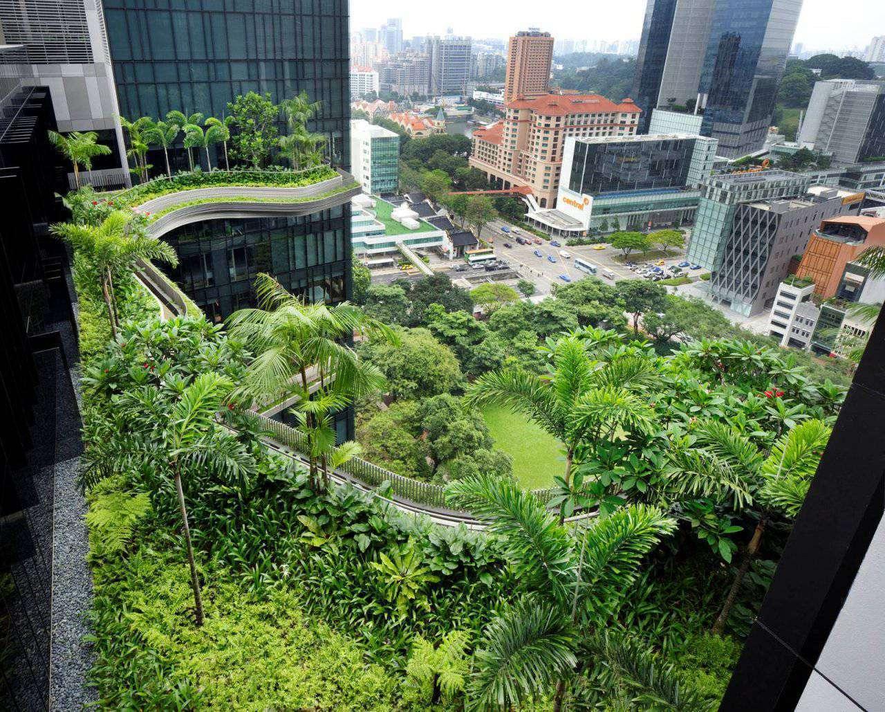Ogród w centrum miasta 3