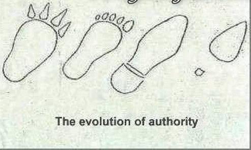 Ewolucja z przymrużeniem oka 25