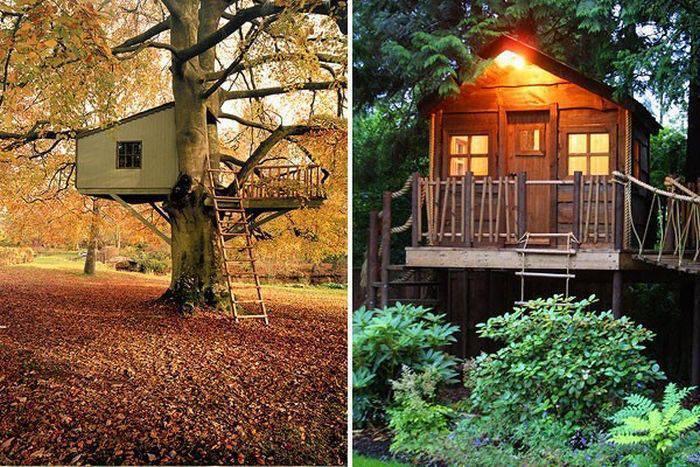 Domki na drzewie 3