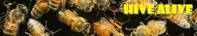 Hive Alive S01E02 720p HDTV x264-C4TV