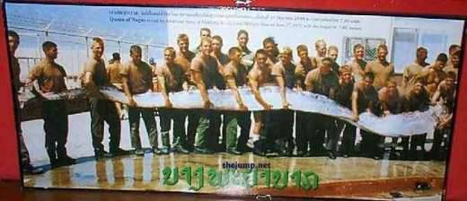 Dziwnie długa ryba 8