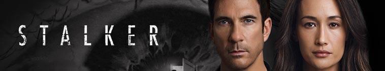 Stalker S01E04 HDTV XviD-AFG