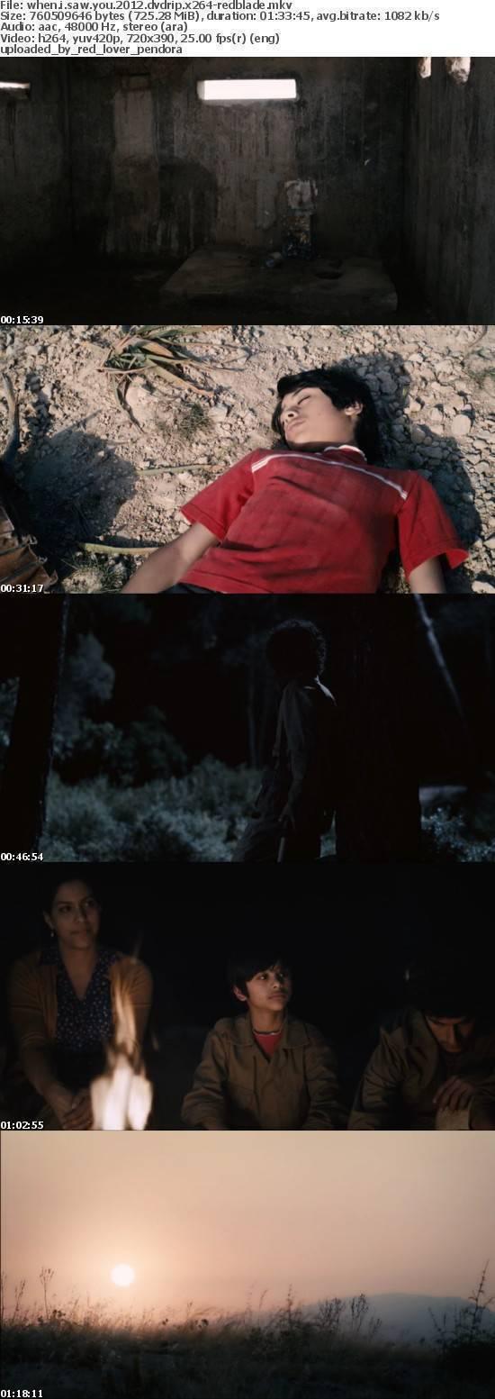 When I Saw You 2012 DVDRip x264-RedBlade