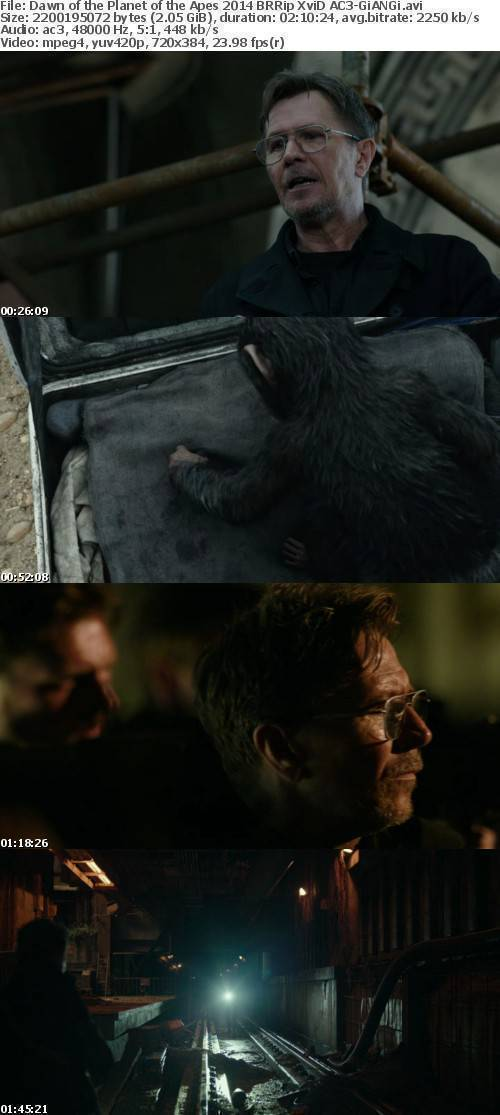 Dawn of the Planet of the Apes 2014 BRRip XviD AC3-GiANGi