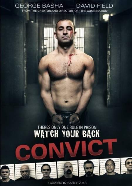 Convict 2014 480p WEB-DL x264-mSD