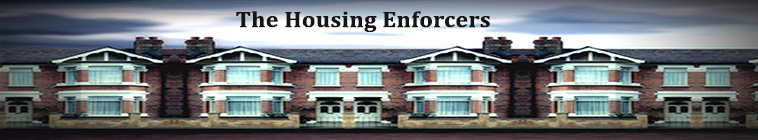 The Housing Enforcers S03E19 XviD-AFG
