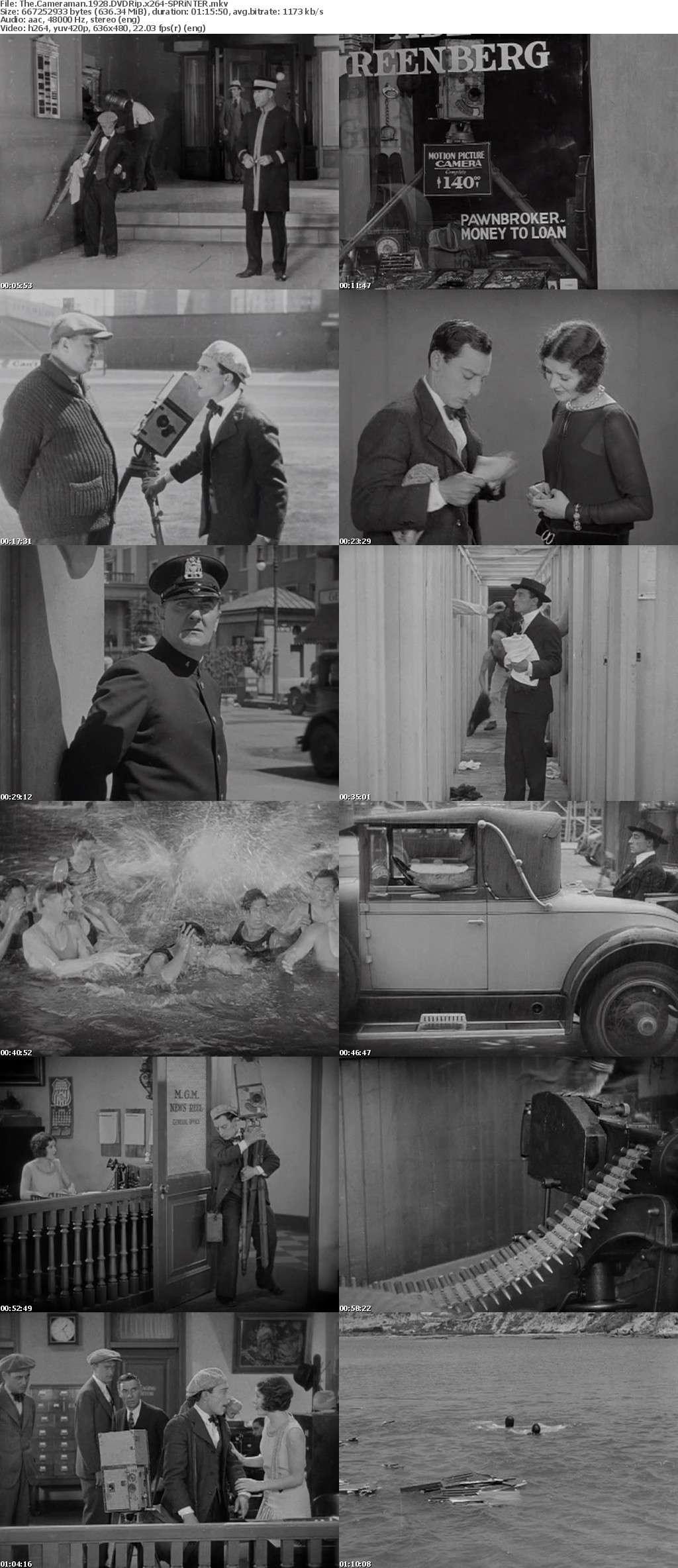 The Cameraman 1928 iNTERNAL DVDRip x264-SPRiNTER