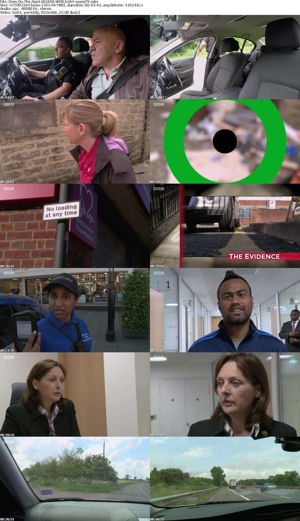 Dom On The Spot S01E06 WEB h264-spamTV