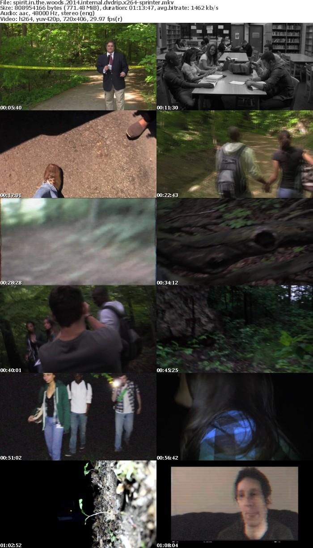Spirit In The Woods 2014 iNTERNAL DVDRip x264-SPRiNTER