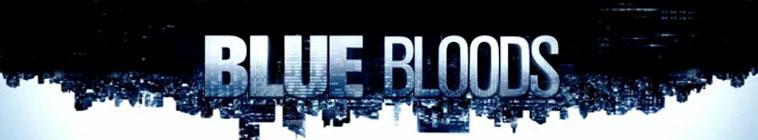 Blue Bloods S06 NTSC DVDR-ToF