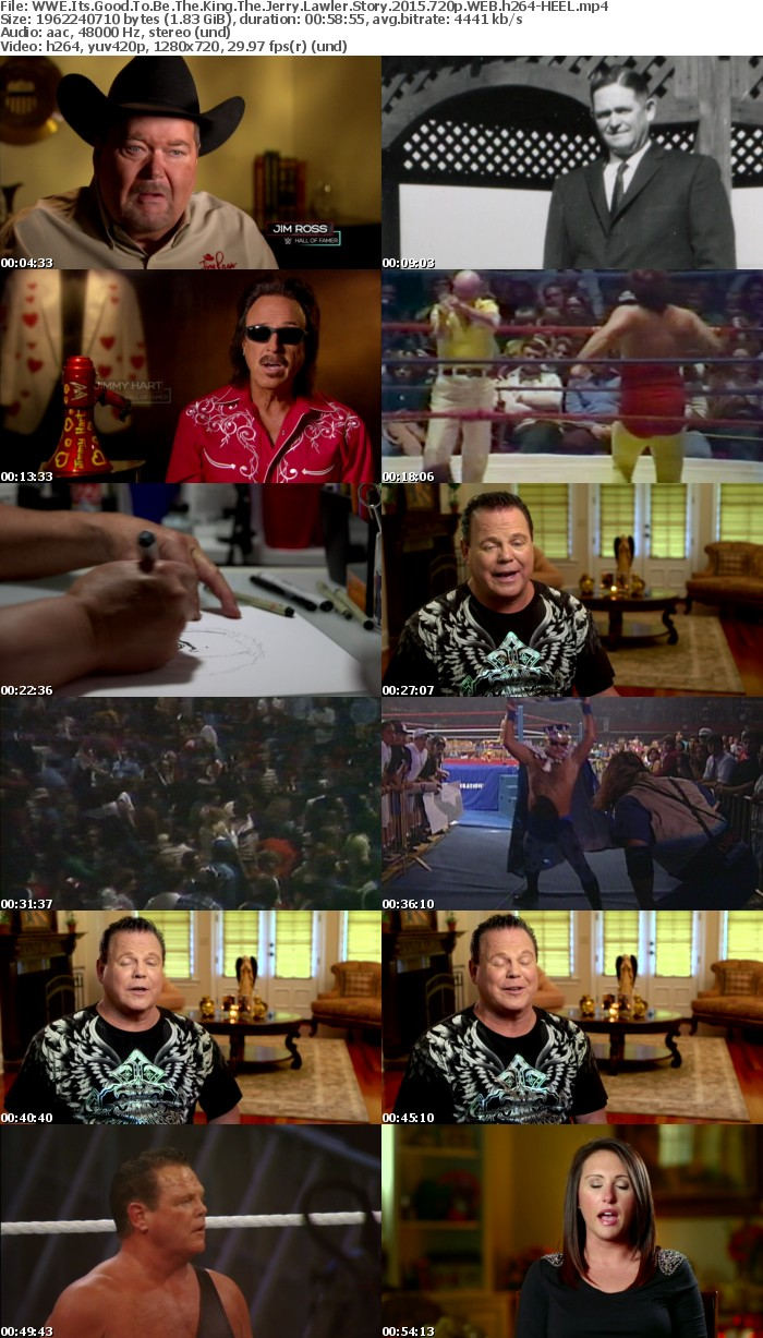 WWE Its Good To Be The King The Jerry Lawler Story 2015 720p WEB h264-HEEL