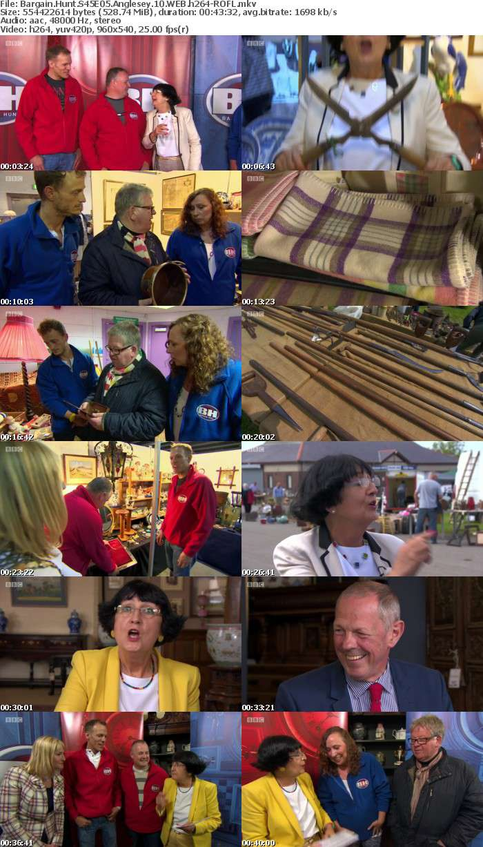 Bargain Hunt S45E05 Anglesey 10 WEB h264-ROFL