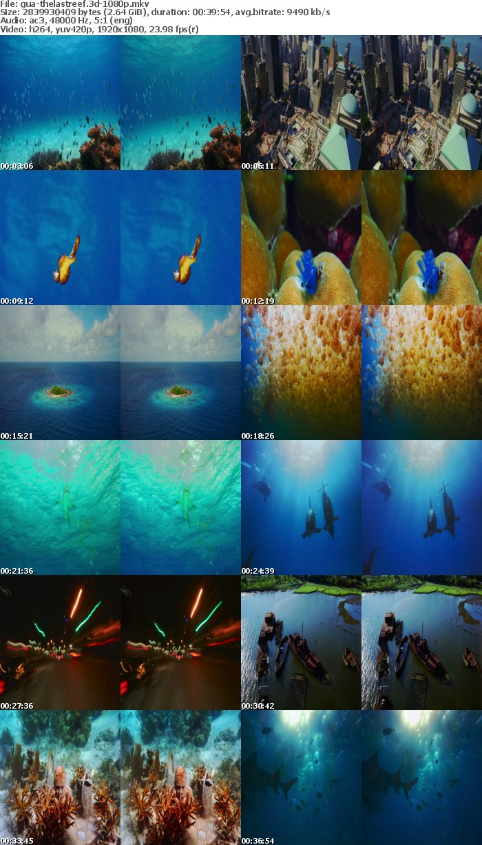 The Last Reef 3D 2012 1080p BluRay x264-GUACAMOLE