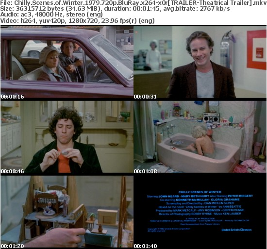 Chilly Scenes of Winter 1979 720p BluRay x264-x0r