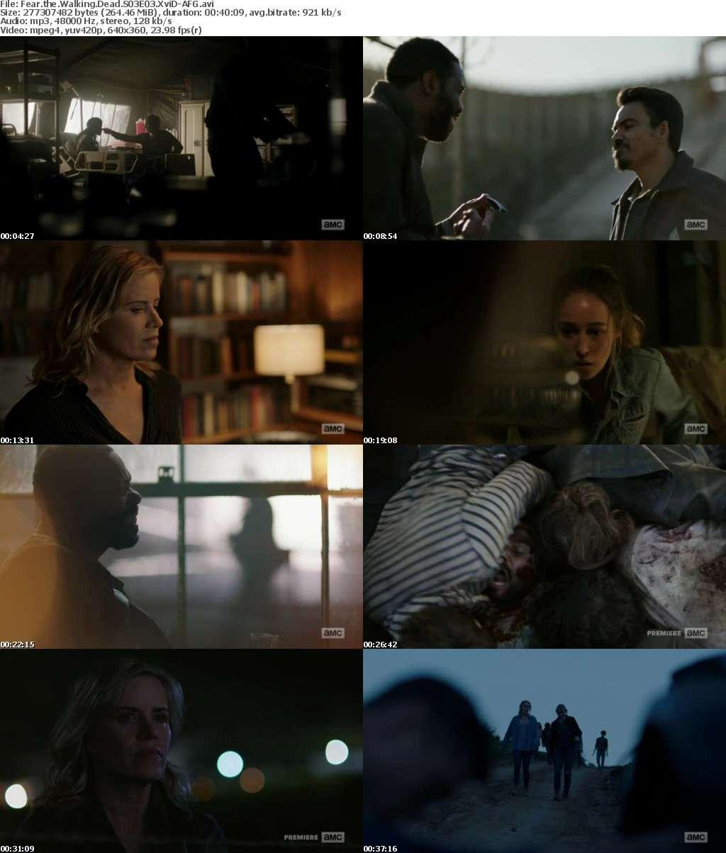Fear the Walking Dead S03E03 XviD-AFG