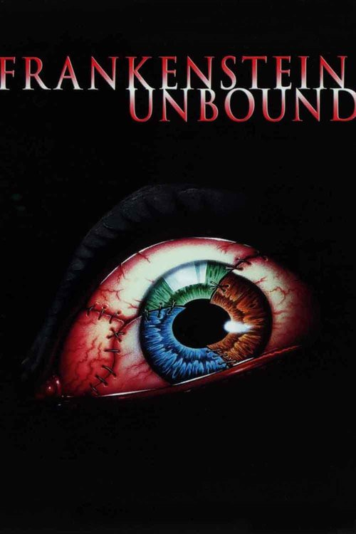 Frankenstein Unbound 1990 INTERNAL DVDRip XviD-FLS