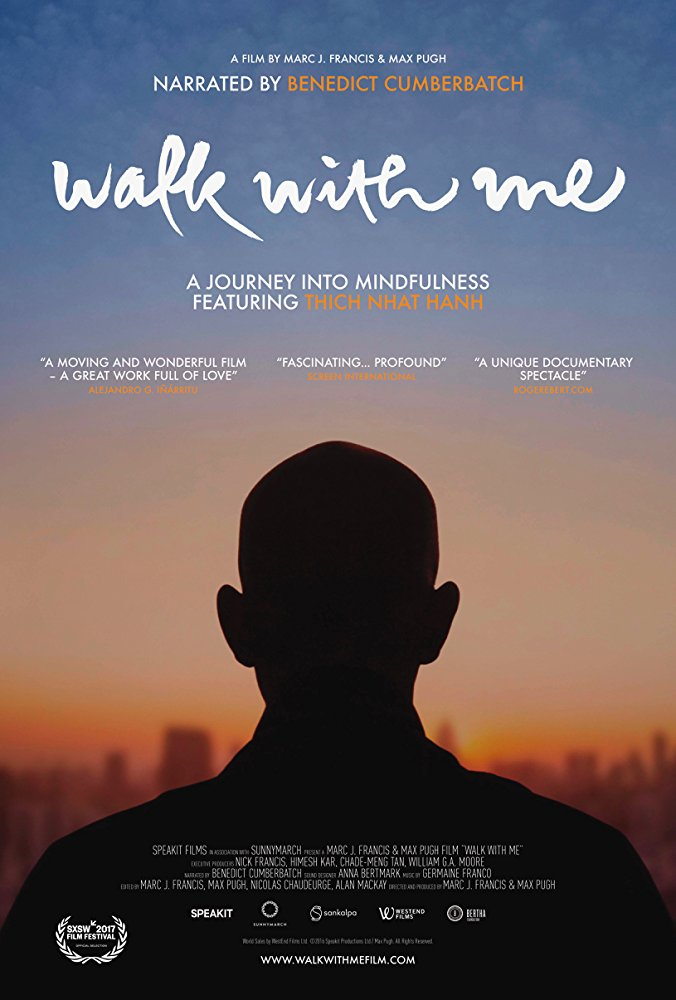 Walk with Me 2017 BRRip XviD MP3-XVID