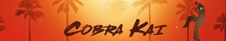 cobra kai s01e08 1080p web h264-convoy
