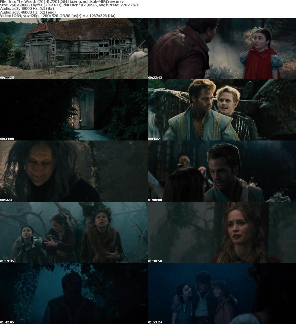 Into The Woods (2014) 720p BluRay H264 [Italian+English] Ac3 5.1 MultiSubs-MIRCrew