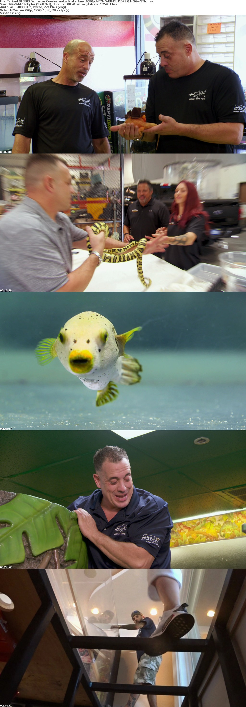 Tanked S15E03 Demarcus Cousins and a Snake Tank 1080p AMZN WEB-DL DDP2 0 H 264-NTb