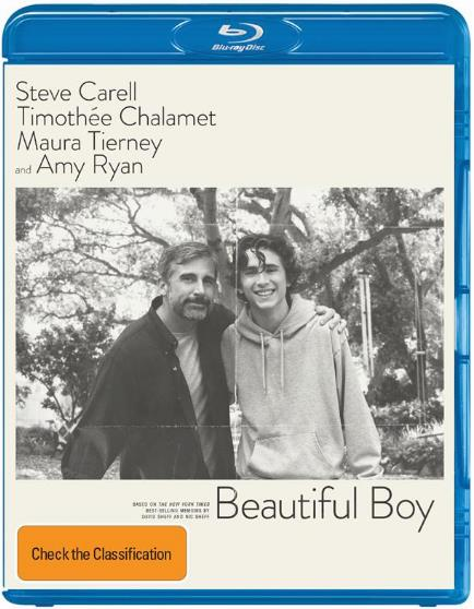 Beautiful Boy (2018) 720p WEB H264-METCONrarbg