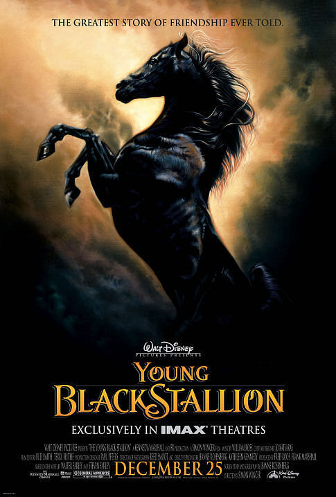 The Young Black Stallion 2003  WEBDL AAC2 0 H264FGT