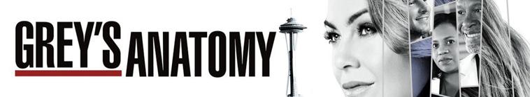 Greys Anatomy S14E18 MULTi 1080p HDTV x264-SRiZ