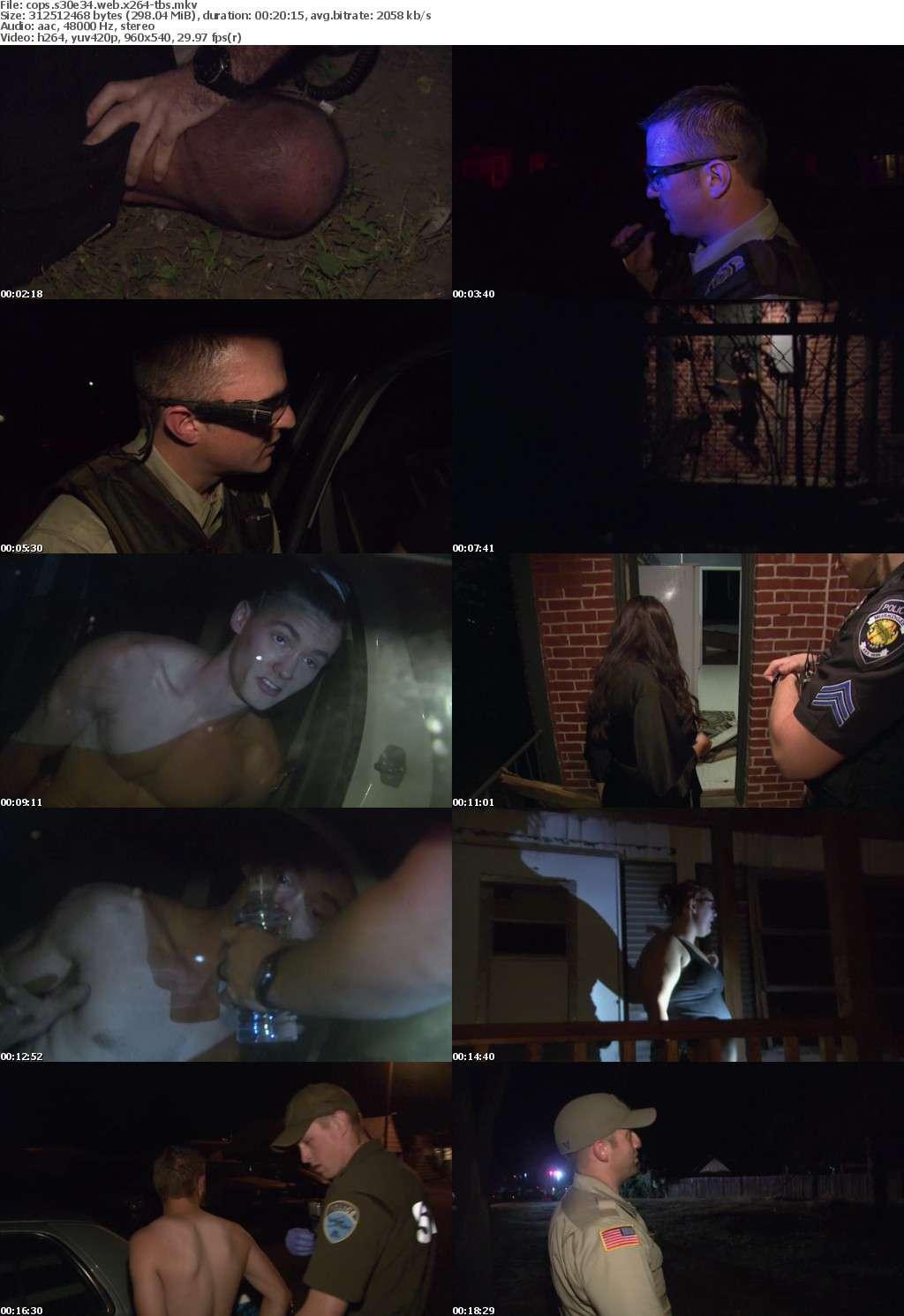 Cops S30E34 WEB x264-TBS