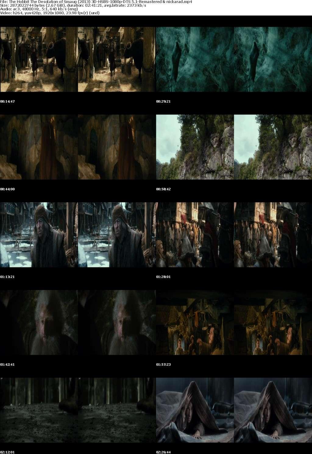 The Hobbit The Desolation of Smaug (2013) 3D HSBS 1080p BluRay AC3 Remastered-nickarad