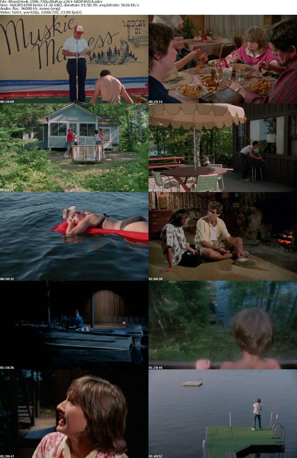 Blood Hook 1986 720p BluRay x264-SADPANDA