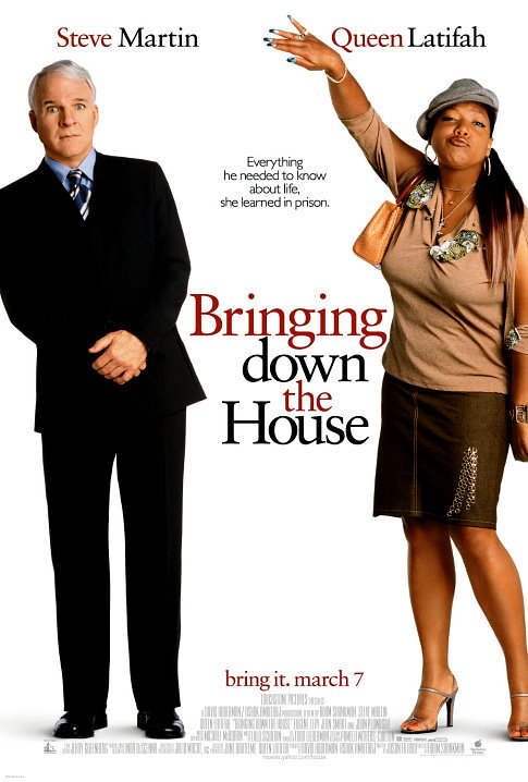Bringing Down the House 2003 BRRip XviD MP3-XVID