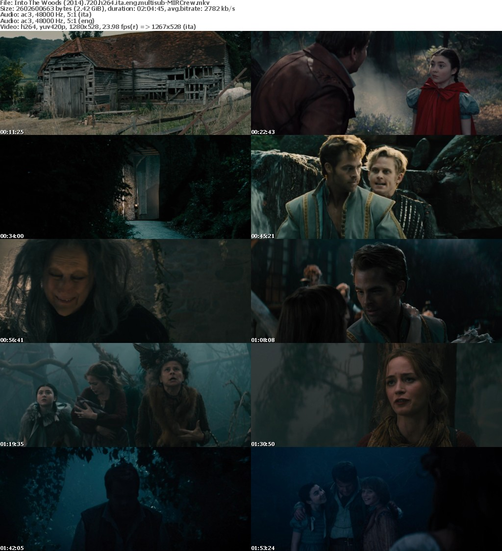 Into The Woods (2014) 720p BluRay H264 [Italian+English] Ac3 5.1 MultiSubs-MIRCrew