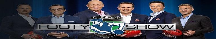 AFL 2018 Round 20 Tigers vs Cats HDTV x264-WiNNiNG