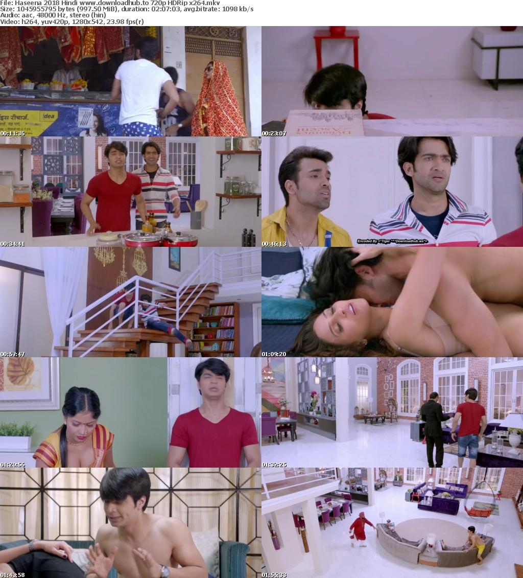 Haseena (2018) Hindi 720p HDRip x264 AAC - Downloadhub