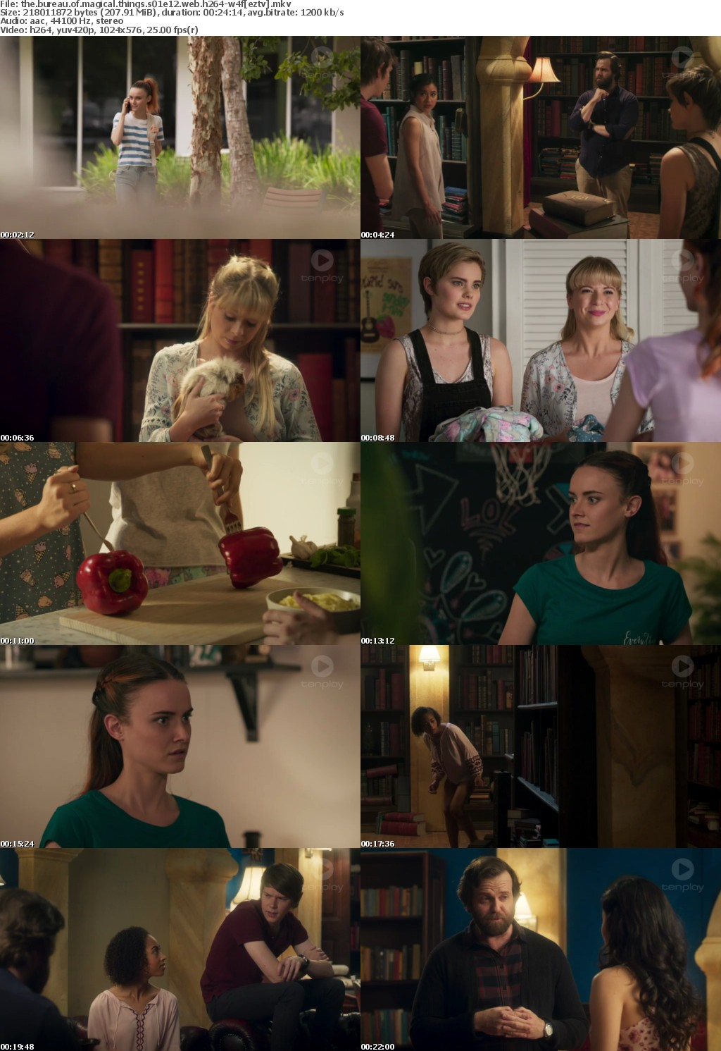 The Bureau of Magical Things S01E12 WEB H264-W4F