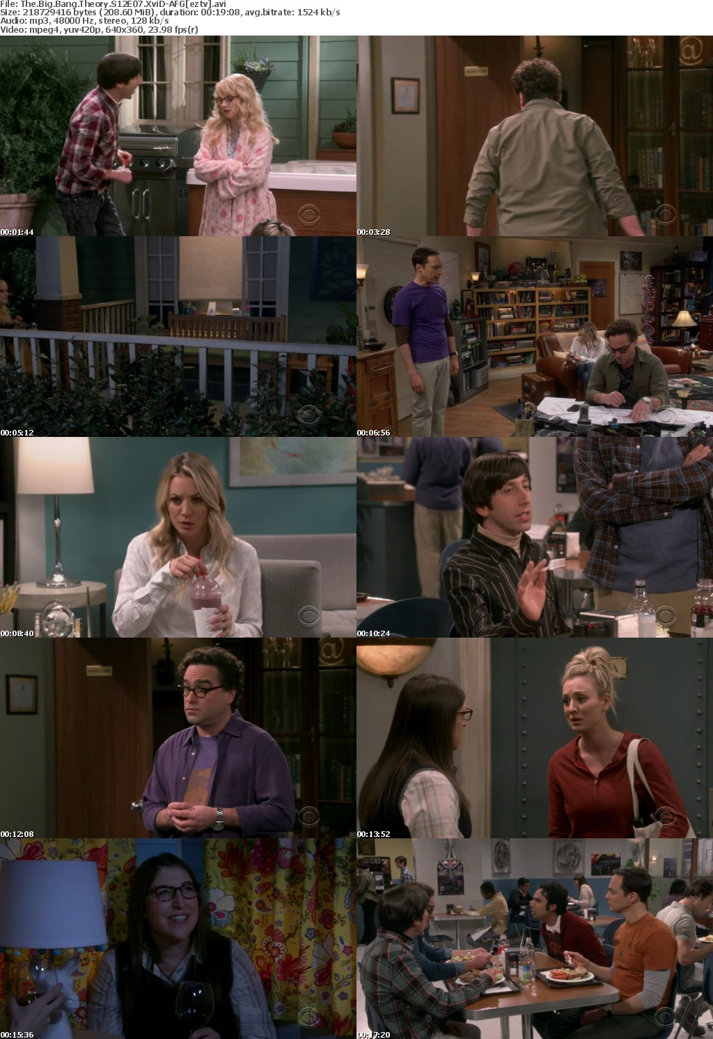 The Big Bang Theory S12E07 XviD-AFG