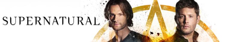 Supernatural S14E06 HDTV x264-SVA