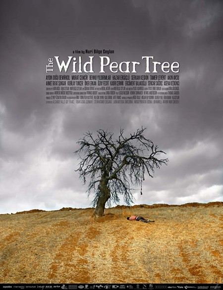 The Wild Pear Tree (2018) BRRip HC ENG SUBS - SHADOW