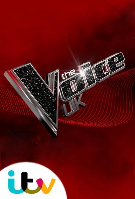 The Voice UK S08E01 720p HDTV x264-QPEL
