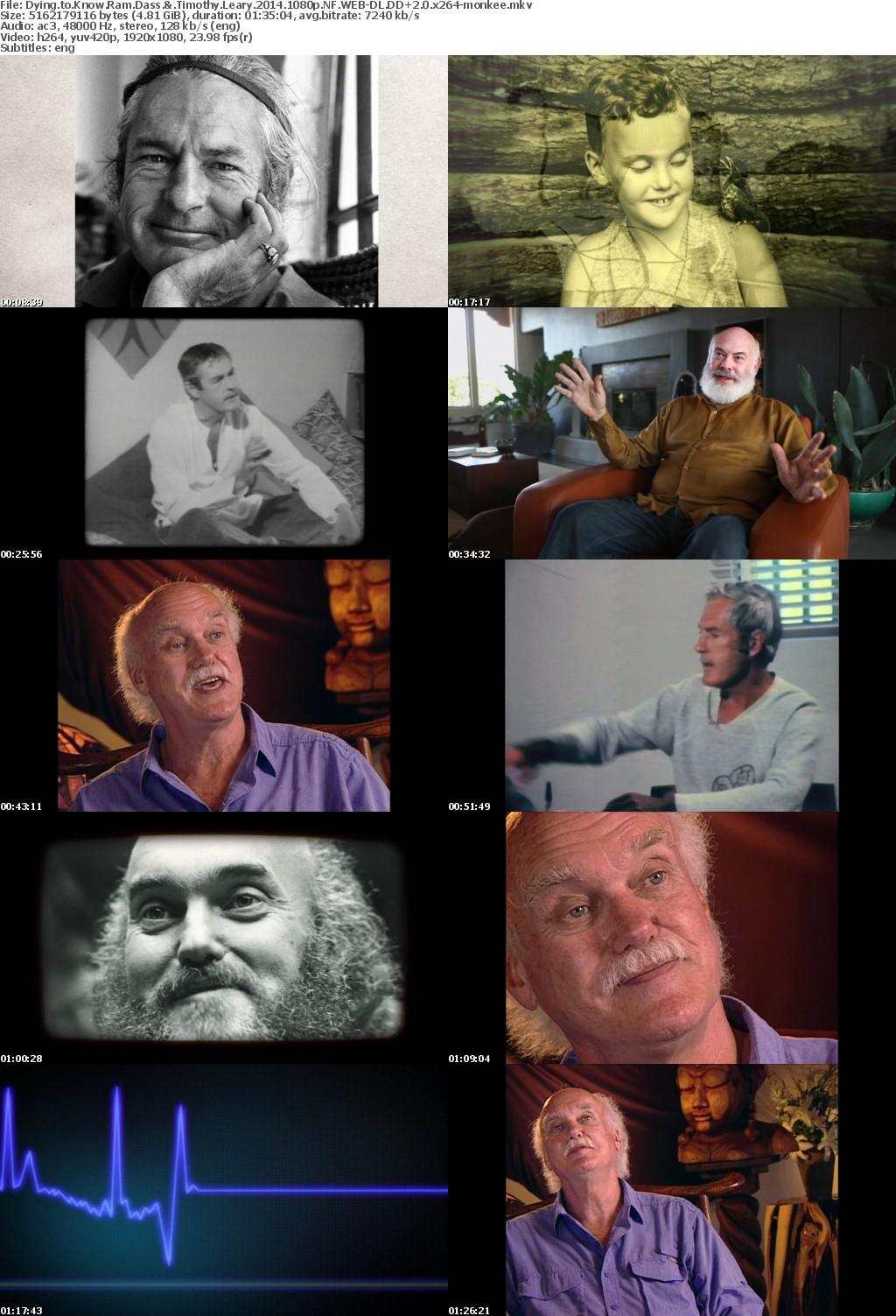 Dying to Know Ram Dass Timothy Leary 2014 1080p LSD GOD