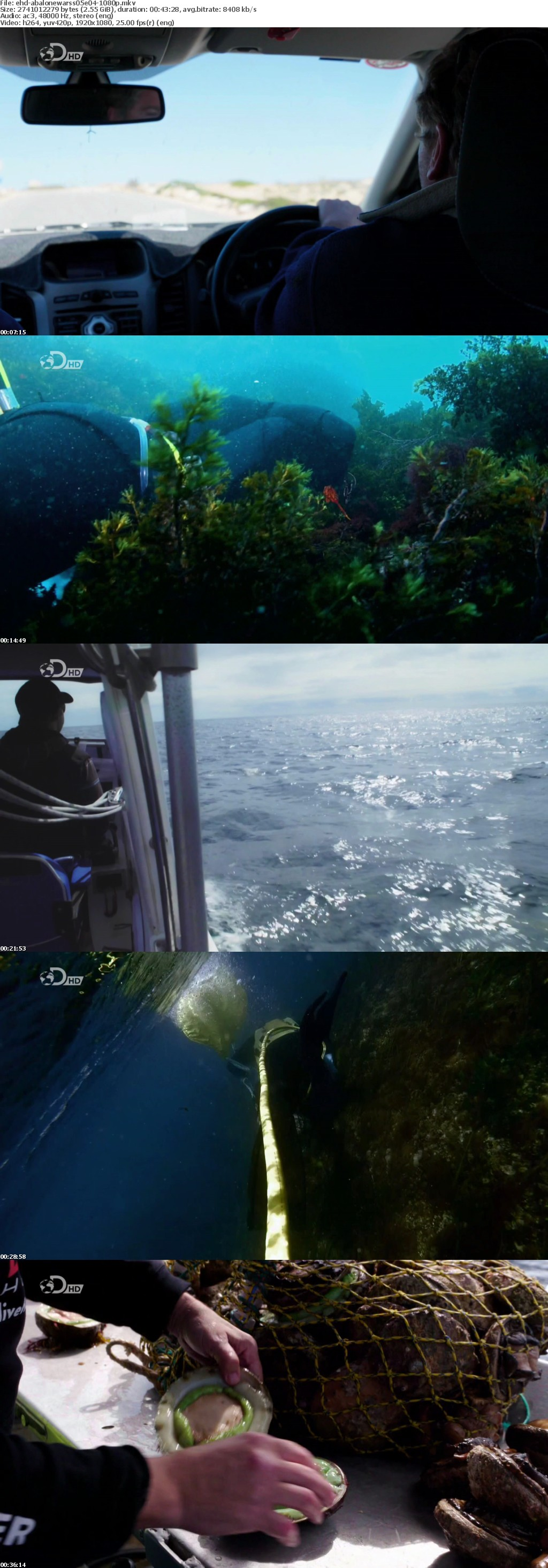 Abalone Wars S05E04 1080p HDTV x264-EHD