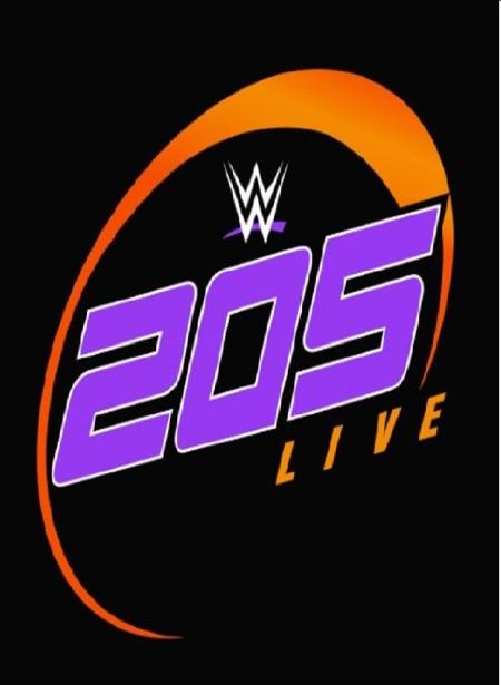 WWE 205 Live (2019) 01 29 WEB h264  HEEL