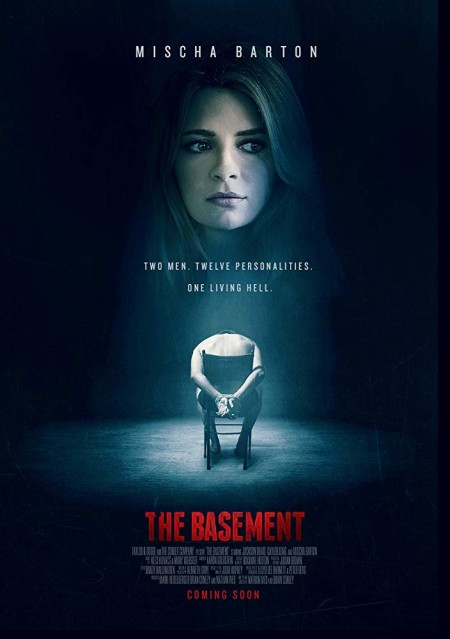 The Basement 2018 LiMiTED 720p BluRay x264-CADAVER