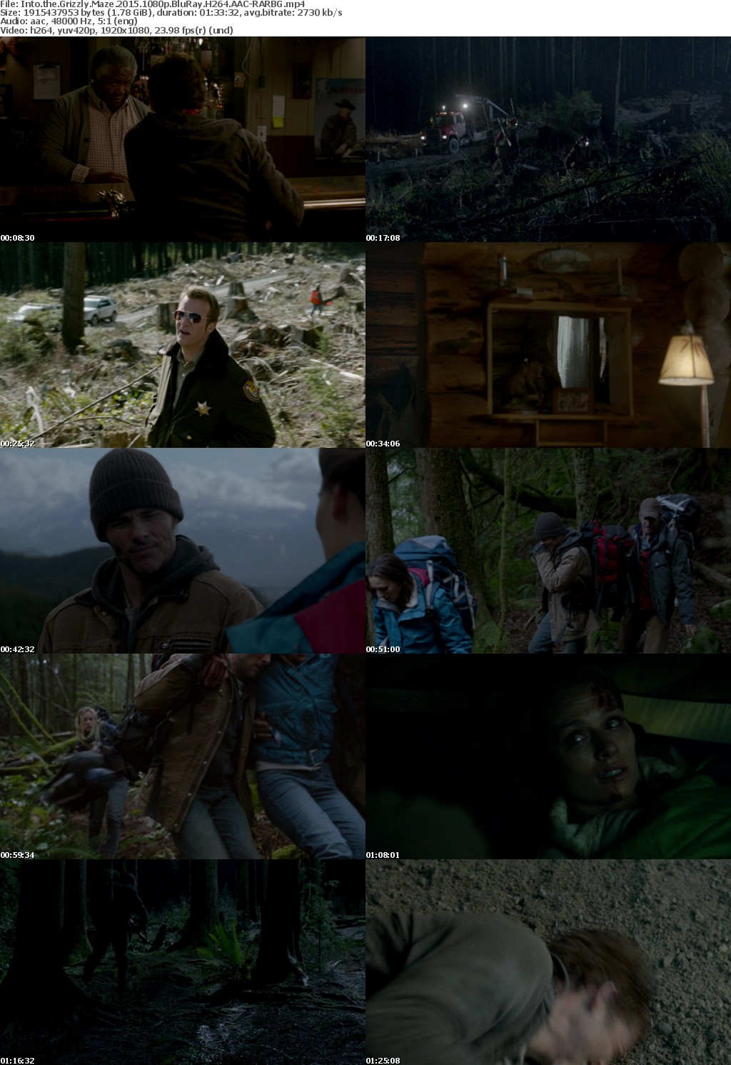 Into the Grizzly Maze (2015) 1080p BluRay H264 AAC-RARBG